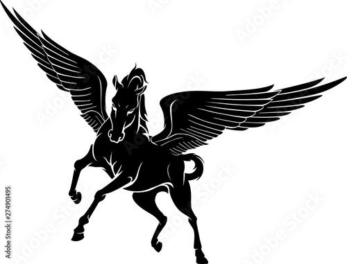 Valokuvatapetti Pegasus Front View