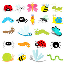 Insect Icon Set. Lady Bug Mosq...