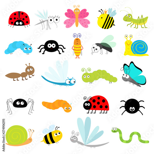 Insect icon set Poster Mural XXL