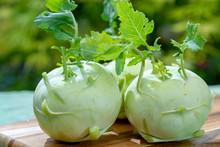 Fresh Ripe Bio White Cabbage Kohlrabi From Organic Farm, Close Up