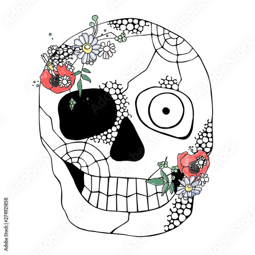 Printed kitchen splashbacks Watercolor skull Vector hand drawn illustration of smiling skull with watercolor flowers, spider web, tooth, face of human Print horror for t shirt. Mexican style, day of the dead, halloween. Sketch, doodle drawing.