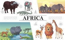 Cartoon African Animals Compos...