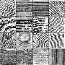 Set Of Vector Realistic Wooden...