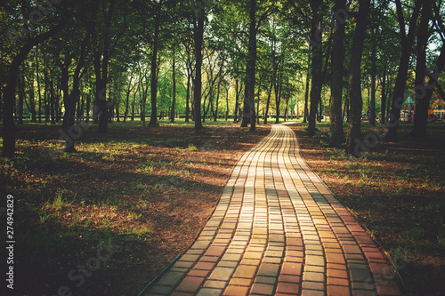 Garden Poster Road in forest Alley, pathway in the city park in sunlight. Cobbled alley in the public park. Green tree foliage. Nature outdoor landscape with road, way, trees. Footpath in wood