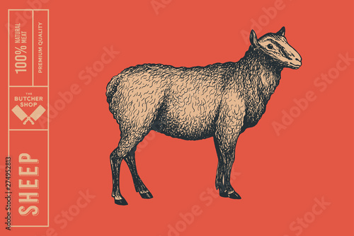 Carta da parati Retro graphic hand-drawn sheep on a red background