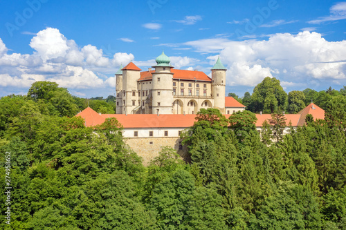 Obraz Wisnicz Castle - Poland - fototapety do salonu