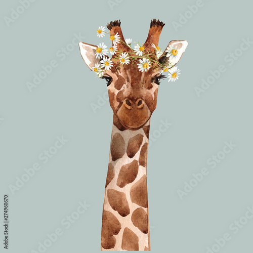 Watercolor giraffe vector portrait Wallpaper Mural
