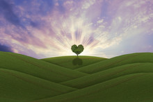 Green Heart Shaped Tree On A H...