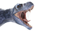 3d Rendered Illustration Of A T-rex Isolated On White