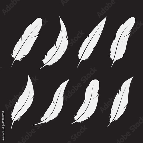 Photographie Vector group of white feather on white background