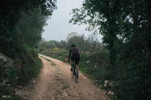 Evening Gravel Ride Throught Olive Orchards