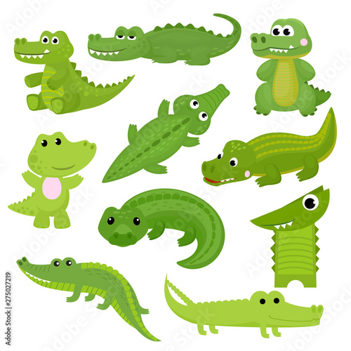 Fotografie, Obraz  Crocodile vector cartoon crocodilian character of green alligator playing in kid