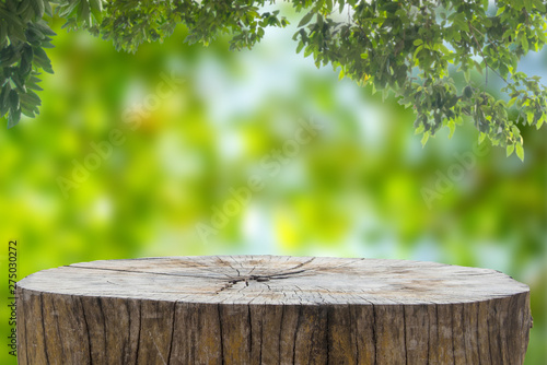 Papiers peints Pistache Wooden desk or stump in green forest background,For product display.