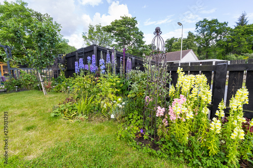 Montage in der Fensternische Lavendel Perennial plants in a cottage garden border