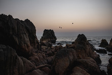 Birds At Sunset Flying Over Sharp Rocks Flowing Into The Deep Blue Ocean