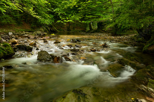 Foto op Aluminium Rivier Erro river , Sorogain forest in Erro Valley, Navarre, Spain