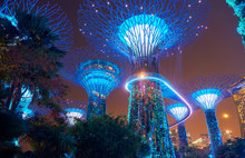Gardens By The Bay At Night In...