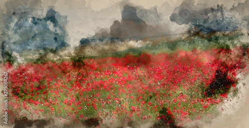 Foto auf Gartenposter Beige Digital watercolor painting of Poppy field landscape in Summer countryside sunrise