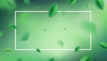 Green Nature Abstract Background With Flying Spring Leaves And White Frame Vector Design