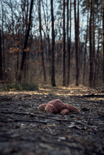 Abandoned Bunny Toy Laying Dow...