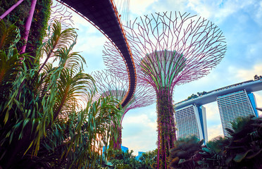 Gardens by the Bay  with Su...