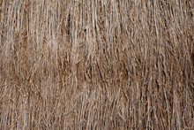 Thatched Roof Straw Pattern Or...