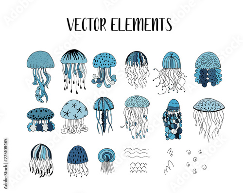 Canvas Print Vector set of jellyfish style drawn by hand