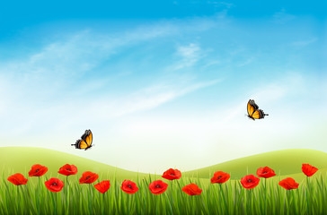Panel Szklany Maki Summer nature landscape background with red poppies and blue sky. Vector.
