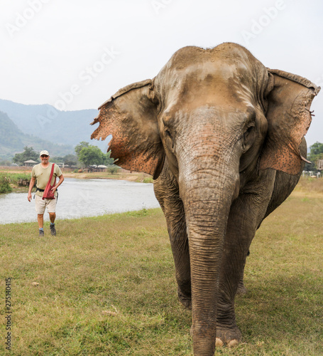 Fotobehang Olifant Man walking along a river beside an elephant