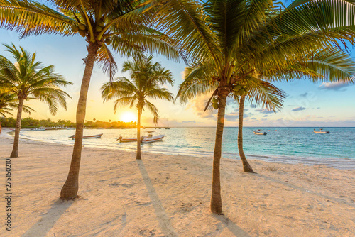 Akumal bay - Caribbean white beach in Riviera Maya, coast of Yucatan and Quintan Wallpaper Mural