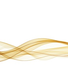 Abstract Gold Wavy On White Background With Golden Color Smooth Curves Wave Lines For Luxury Background. Eps 10