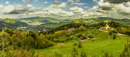 Palenica - Szczawnica widok szczytu, panorama #275170043