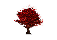 Vector Red Maple Tree Icon Iso...