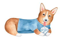 Cute Corgi Dog Character Holding Paper Cup With Ice Cream. Symbol Of Summertime, Positivity, Fun. Hand Painted Watercolour Drawing On White Background For Design, Prints, Greeting Card, Invitation.