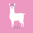 Vector flat cartoon cute white llama with flowers isolated on pink background