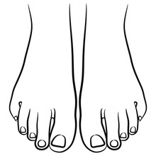 Top View Of Two Bare Human Feet. Black And White Linear Silhouette.