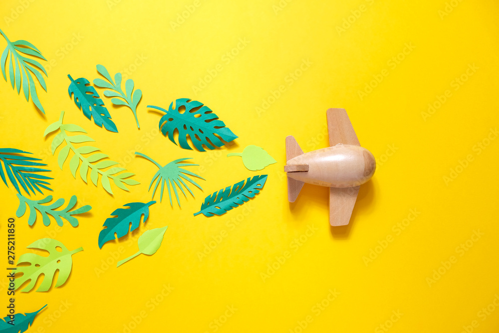 Fototapety, obrazy: small wooden toy airplane lucky by summer