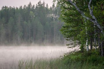 Fototapeta Do sypialni Misty morning at a finnish lake in forest and wilderness, Finland