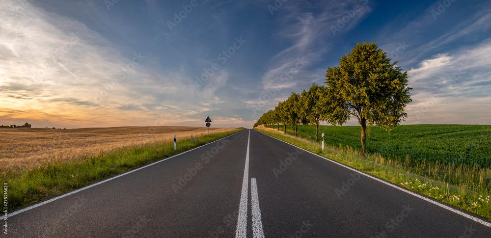 Fototapety, obrazy: Asphalt road leading to the German village