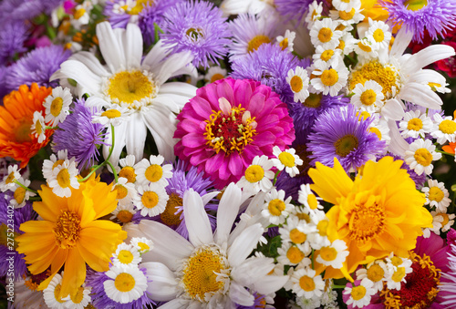 Fototapety, obrazy: bouquet of various summer flowers as background