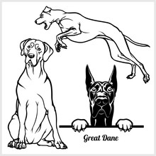 Great Dane - Vector Illustrati...