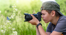Boy Holding Digital Camera And Shooting Butterfly On The Wild Flower