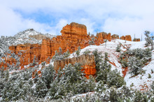 Scenic Hoodoos In Bryce Canyon...
