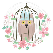 Owl Bird With Feathers Hat And Floral Decoration In Cage