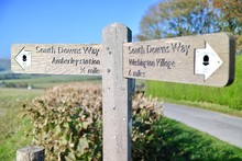 Wooden Sign On The South Downs Way