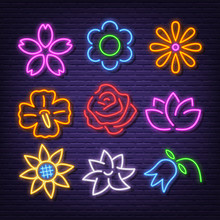 Flower Neon Icons
