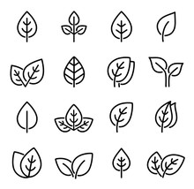 Set Of Line Leaf Icons