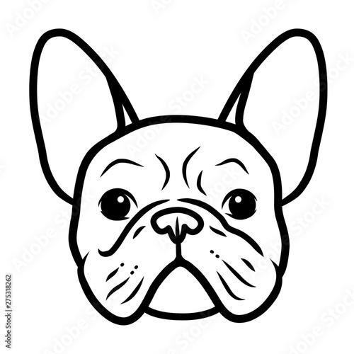 Obraz French bulldog black and white hand drawn cartoon portrait. Funny cute bulldog puppy face. Dogs, pets themed design element, icon, logo. - fototapety do salonu
