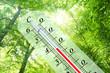 Leinwandbild Motiv Thermometer 103