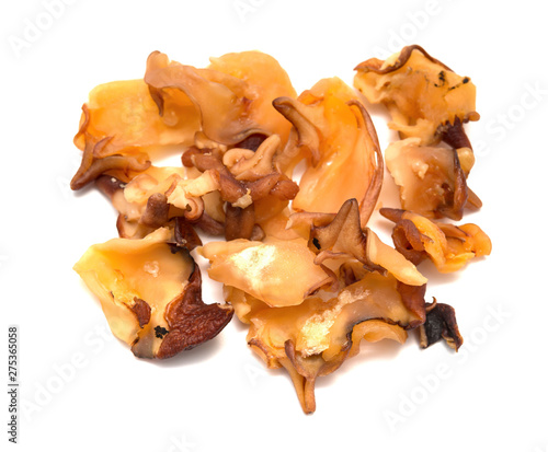 Fotografia top view dry conch meat on a white background